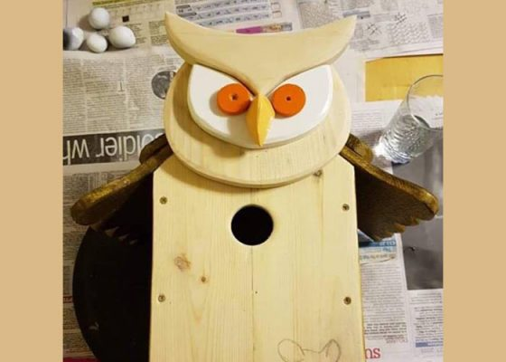 Wooden Owl Bird House